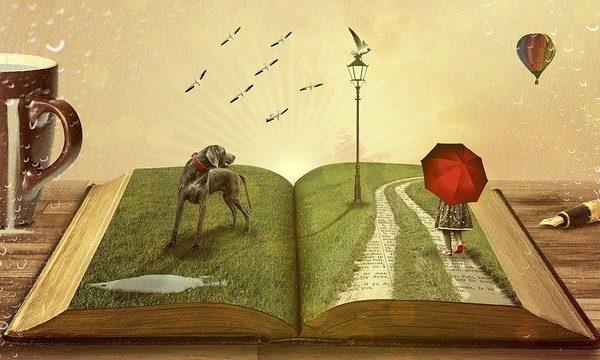 À quoi ressemble un livre pour votre enfant ?
